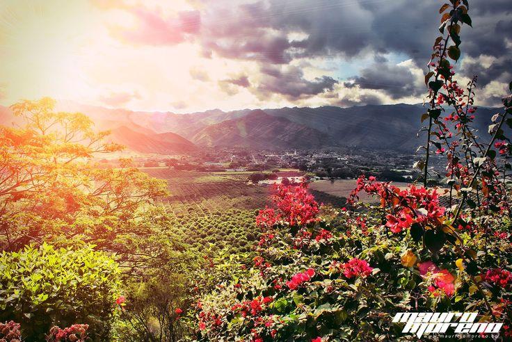 Por qué el Valle del Cauca es tan Especial ?