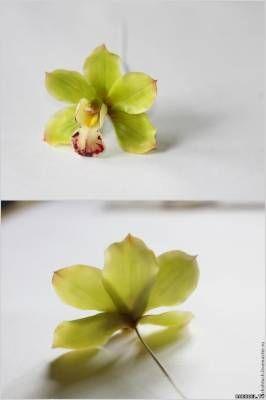 Цветок Орхидея цимбидиум из полимерной глины, мастер класс - Цветы из полимерной глины - Полимерная глина - Каталог статей - Рукодел.TV