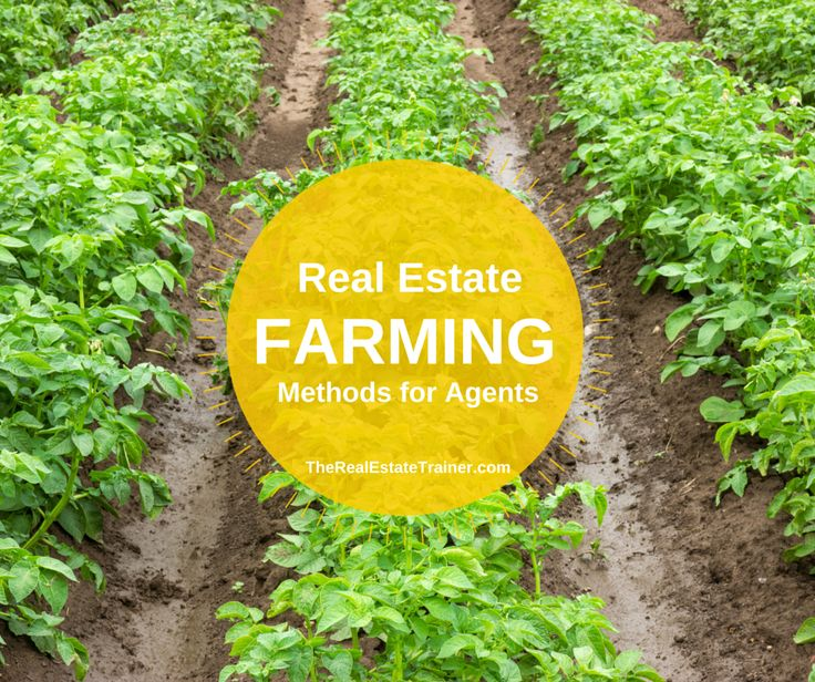 Top 10 Real Estate Farming Tips for Agents - need to start doing this for my neighborhood
