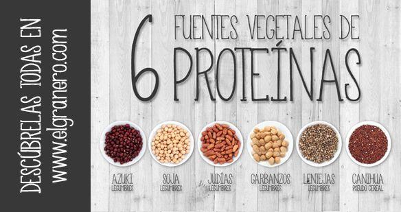 Las proteínas son compuestos orgánicos formados por 20 aminoácidos diferentes. Las funciones de las proteínas son la creación y el mantenimiento de las células y ayudar a metabolizar los alimentos.Muchas personas aún creen que las proteínas solo se encuentran en alimentos de origen animal. Esto