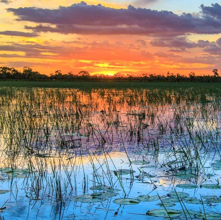 Photo of the sun set over the Mary River floodplains by @jamesrobinsphotography on IG. Located about an hour east of Darwin. A great place for a stop on your way to Kakadu National Park or for a day trip from the park. #big4howardsprings #darwin #maryriverfloodplains