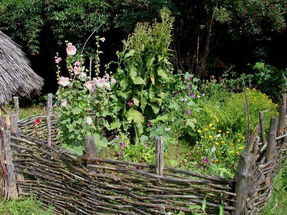 La permaculture : Un jardin potager sans entretien !   Conseils de jardinage pour jardiniers curieux