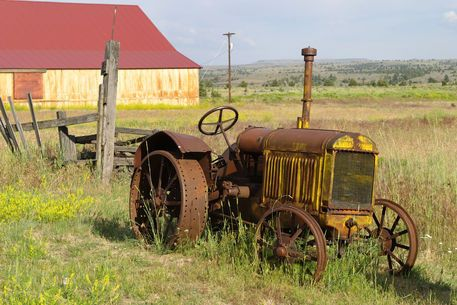 """Rusty vintage tractor in field"""" Picture art prints and posters by ..."""