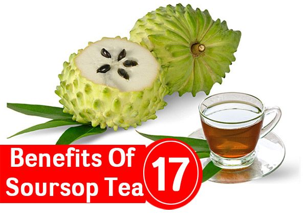 Graviola tea benefits