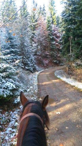 Na prechádzke  jeseň či zima?