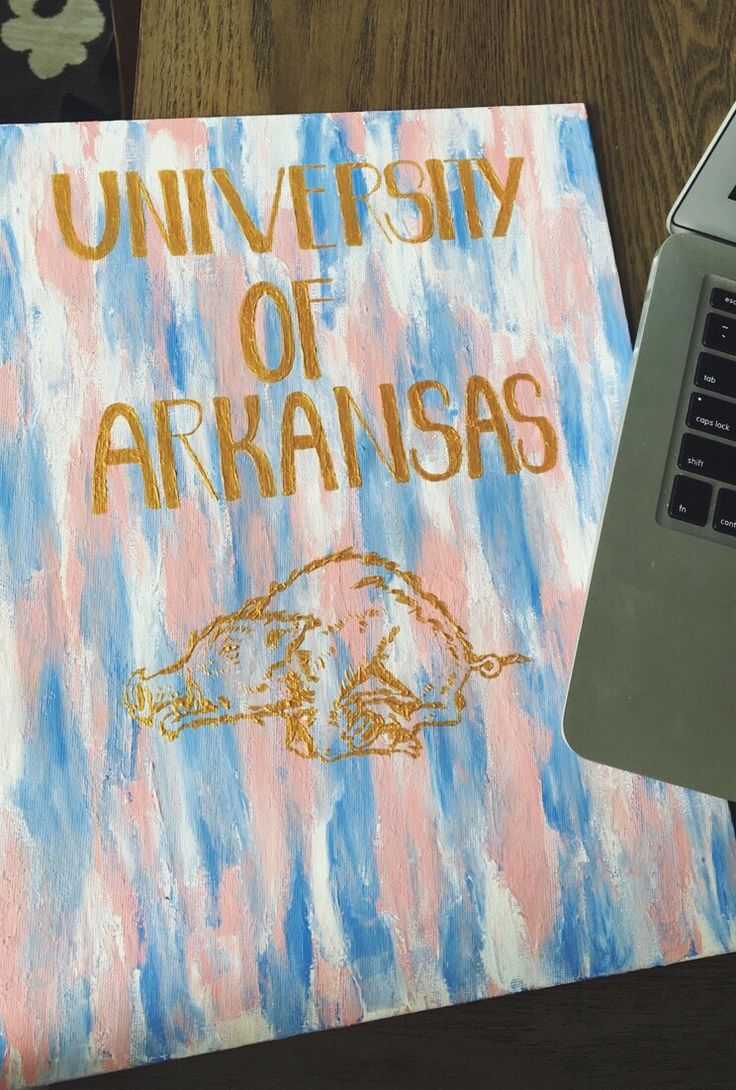 My painting for my dorm at the University of Arkansas!! free handed