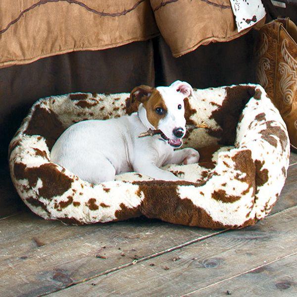 Decor Ideas Dog: Top 25+ Best Dog Decorations Ideas On Pinterest