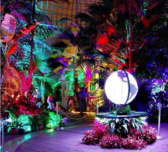 Buffalo NY Botanical Gardens Night Show 2012   Led Lights   Chris Podosek