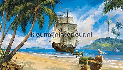 Piraten behang