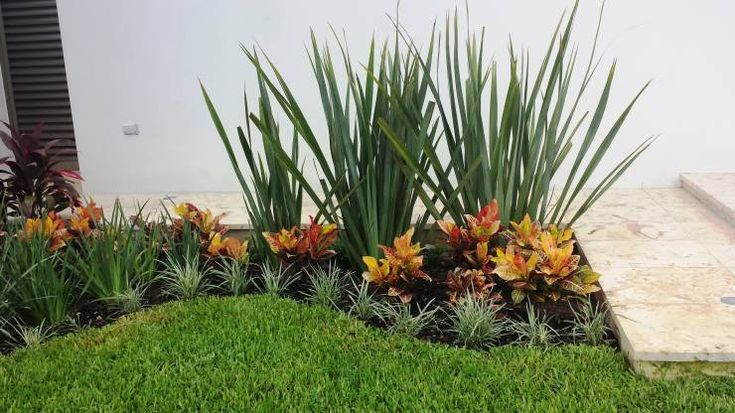 332 best images about jardines con bromelias y orquideas for Jardines de orquideas