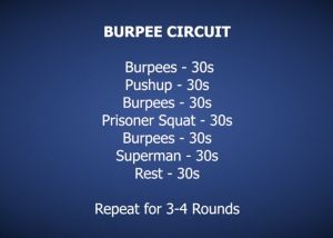 Burpee Circuit Home workout http://hillworks.com.au/hwow