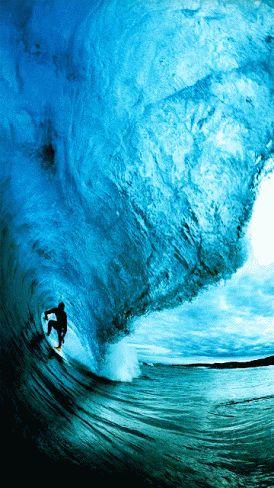 surfing gif