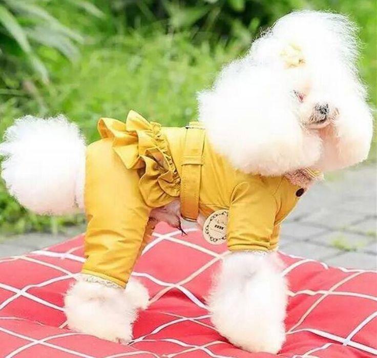 Осень Зима Водонепроницаемый Собака Девушка Комбинезон Pet Jumpcoat Wam Флис Внутри 3 Цвет XS Sml XL Одежда Для Маленьких Собак купить на AliExpress