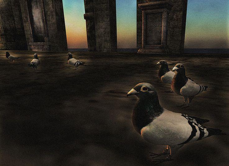 Don't Chase the Pigeons - Sanctum - Fantasy Faire 2014