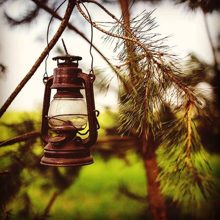 O sabor da vida sempre depende de quem tempera.  Lampião antigo e sua arte!  Liberte sua Imaginação  #artesanato #feitoaquarela #libertesuaimaginação #Curitiba #arte #art #craft