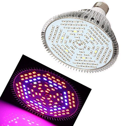 Special Offers - Cheap eSavebulbs 80W Full Spectrum Led Grow Light for Indoor Plants E27 Led Light Bulb for Garden Greenhouse Aquarium Plants Growing - In stock & Free Shipping. You can save more money! Check It (January 29 2017 at 08:46AM) >> https://growinglightfixtures.com/cheap-esavebulbs-80w-full-spectrum-led-grow-light-for-indoor-plants-e27-led-light-bulb-for-garden-greenhouse-aquarium-plants-growing/