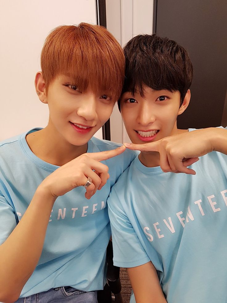 Seventeen Joshua and Dk