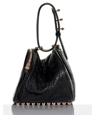 Another Alexander Wang. I want this bag!