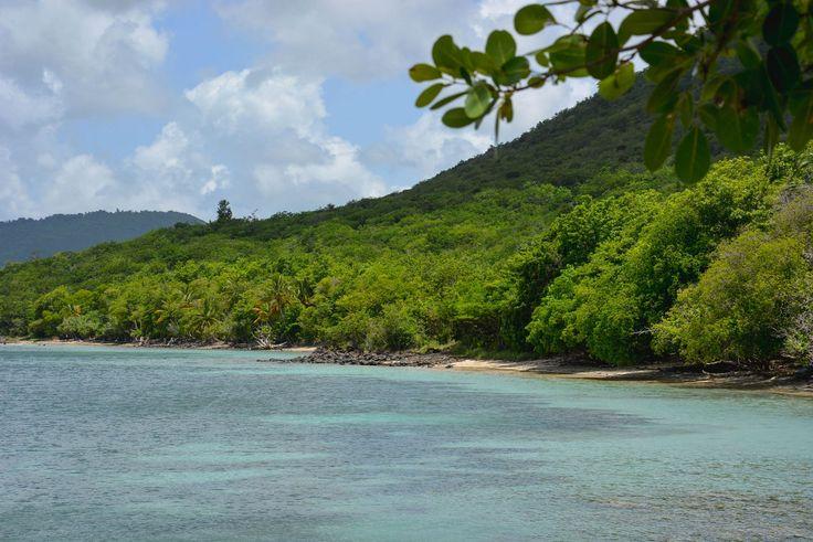 Je vous ai dit que la Pointe Borgnèse était une de mes plages préférées en Martinique ? Et même une des plus belles ? Cachée dans un petit écrin de verdure, entre la forêt sèche du littoral et la m…