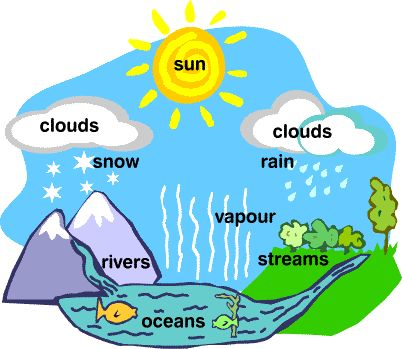 357 best water cycle projects ideas for kids images on water cycle animated gif ccuart Images