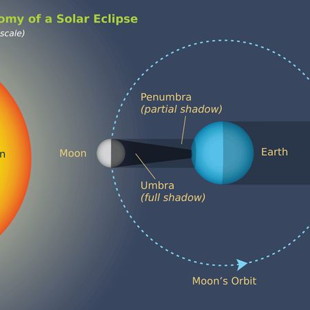 Anatomy of a Solar Eclipse | Moon Phases & Eclipses ...