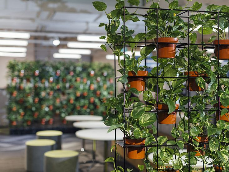 Our Range Of Vertical Garden Screens Are Designed And Made In Melbourne To  An Architectural Standard