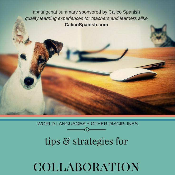 Last week, #langchat decided to talk about ways for World Language teachers to be able to collaborate with their colleagues in other disciplines. Contributors discussed what topics of study in the WL classroom make for good opportunities for cross-disciplinary collaboration, and what things need to be in place to facilitate collaboration with other disciplines. Participants …