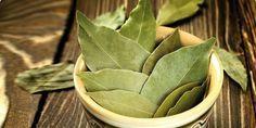 Lorbeerblätter-Tee für die Entkalkung der Blutgefäße und gegen hohen Blutdruck