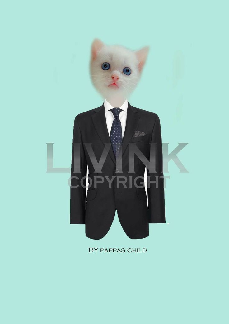 50 x 70 suited kitty by Pappas child via LIVINK. Click on the image to see more!