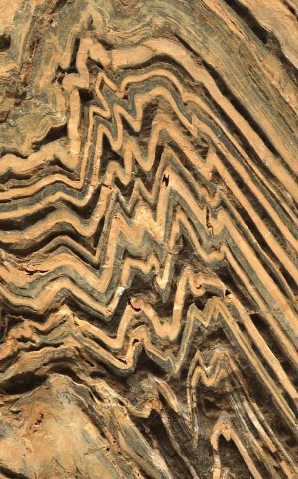 Close up of folding in Metasedimentary Marbles of