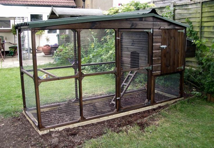 Square foot for 6 chickens | Considerations Before U Start A Chicken Coop | The Poultry Guide