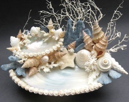 77 best images about seashells art crafts garden on for Arts and crafts with seashells