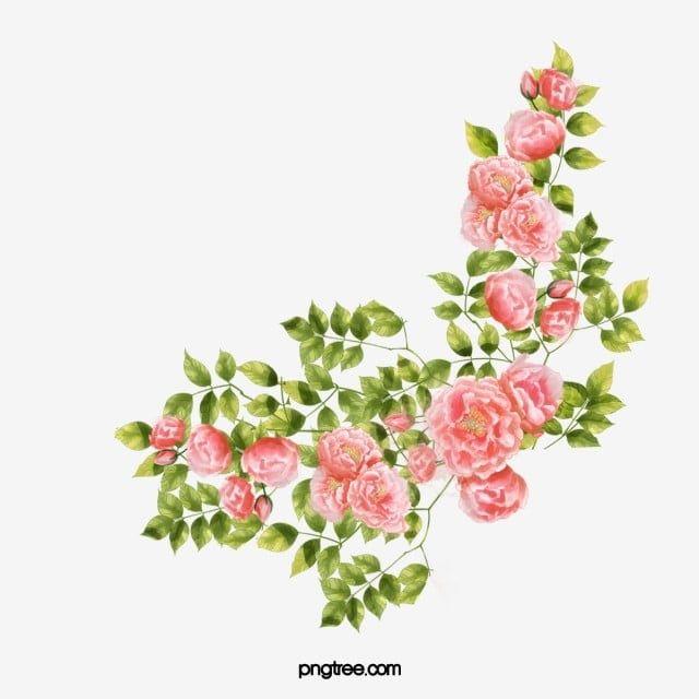 Corner Flower Flowers Decorative Flower Png Transparent Clipart Image And Psd File For Free Download Menggambar Bunga Lukisan Bunga Kartu Bunga