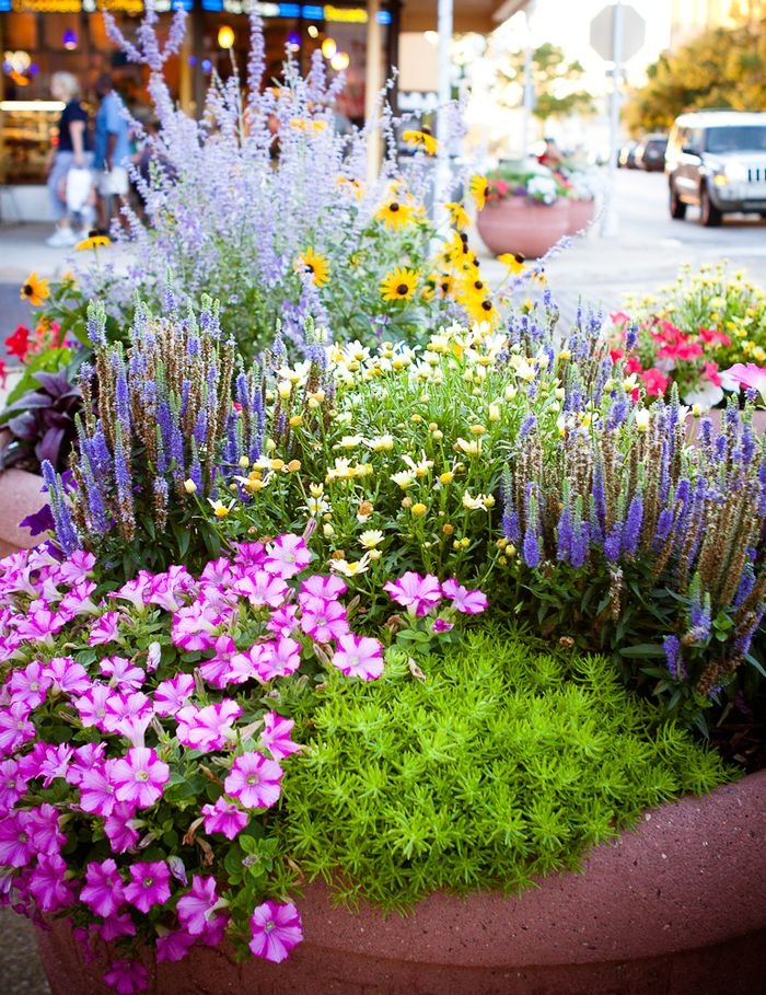 Front yard ideas - this is a very pretty and simple idea