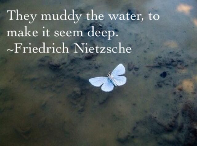 They muddy the water to make it seem deep.  ~Friedrich Nietzsche