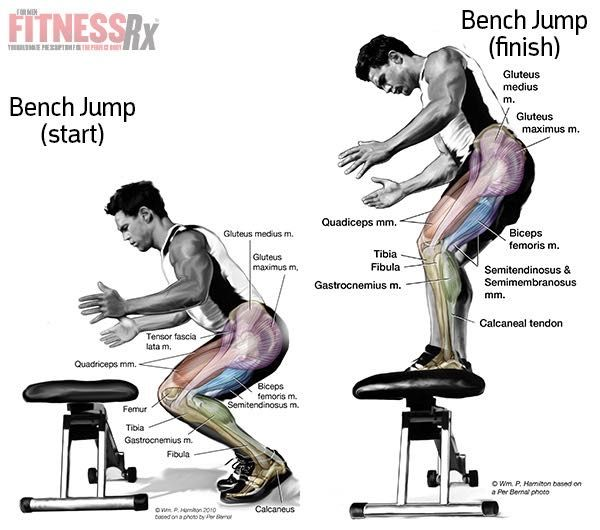 Pintrest Workouts Fitness: Build Explosive Lower Body Power With Bench Jumps