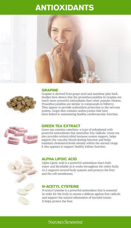 Nature S Sunshine Chlorophyll Benefits