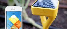 Edyn : Un petit capteur solaire, qui a vu le jour sur Kickstarter, à planter dans la terre de son potager et qui va fournir sur smartphone toutes les informations nécessaires à la croissance des légumes plantés et les stocker sur le cloud. Edyn mesure l'humidité du sol, le pH, la température et envoie sur le smartphone de son utilisateur des notifications et conseils. Toutes les données sont consultables en temps réel, et il est possible de prévoir en avance à quel moment la plante va avoir…