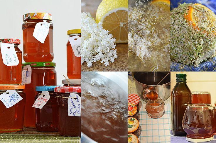 Bezinkový med (z květů černého bezu) ~ Foto La Sonrisa