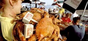 Nothing better to eat than hot Steamy Crabs from Mike's Crab House in Riva, MD Yum-O