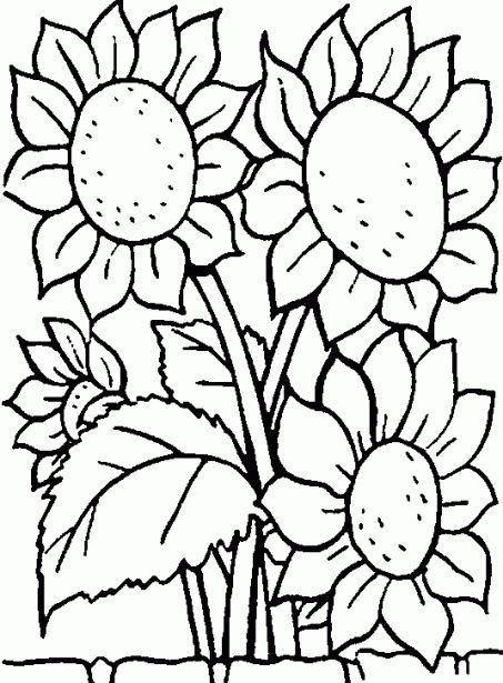 imagenes de flores para colorear | Dibujos infantiles de Flores para colorear. Dibujos animados de Flores ...