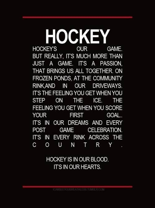 Hockey! Bring our family together every night it's on tv, or we're playing street hockey with the neighbours, Tim and Ty play on the PS4. Chase and I play mini sticks in the basement for hours on end.   It's in our blood, in our hearts and in our souls. Hockey is our passion.
