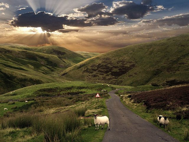 petitemonde:Northumberland, England enchantedengland: The north of England is so beautiful, generally underappreciated, and has far less tourists….:)