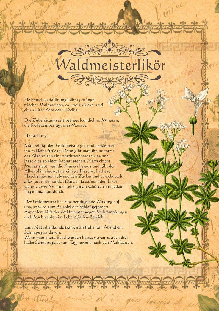 Waldmeisterlikör                                                                                                                                                                                 Mehr
