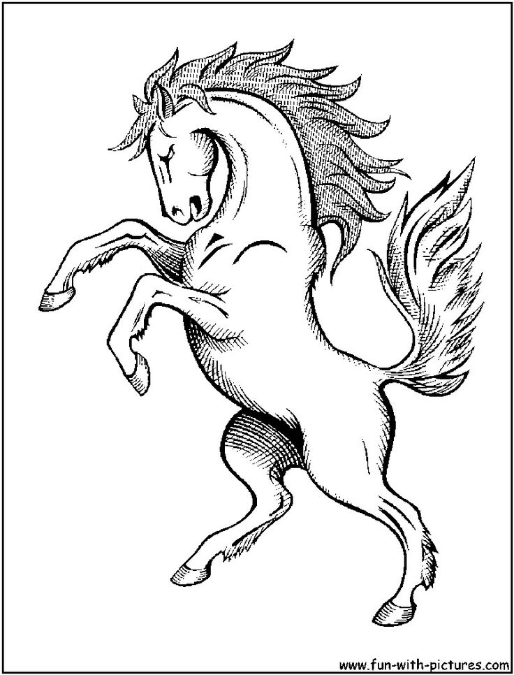 wild horse coloring pages - Running Horse Coloring Pages