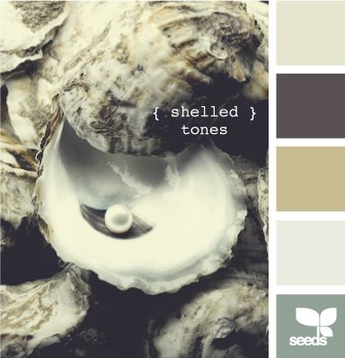 paint color group: shelled tones...I'm never going to be able to decide on a final color scheme for our new house...luckily we don't have a new house yet.