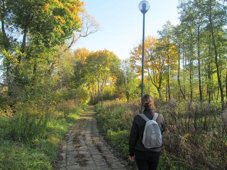 Kierujemy się w kierunku jeziora Czarnego widocznego w oddali. Jezioro, nieraz schowane za drzewami i krzakami, będzie nam towarzyszyć przez dłuższy czas.  www.it.mragowo.pl
