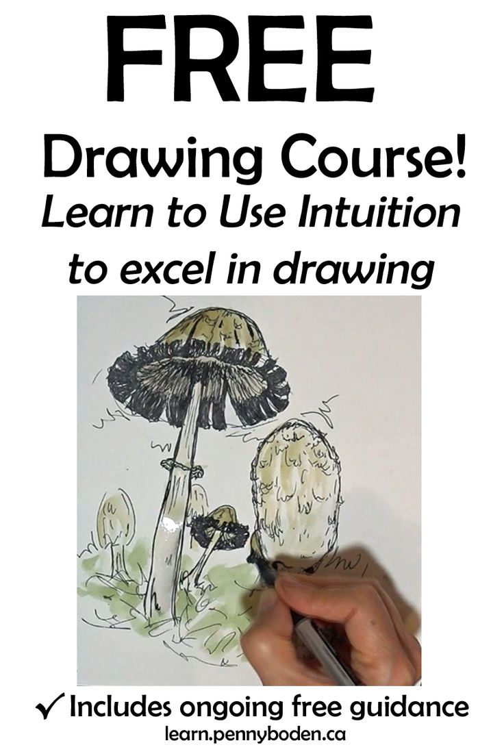 """Become the artist you always wanted to be! Join Professional Artist, Penny Boden, on an exciting path toward success. Penny's specialty is guiding students in utilizing their inborn intuition to strengthen art skills and to excel in drawing. This powerful method involves NO formulas or techniques. Confidence soars as you gain full ownership of your new skills. Enroll for FREE in """"Launch yourself toward Remarkable Drawing Skills"""" by visiting http://learn.pennyboden.ca/p/simple_sketching"""