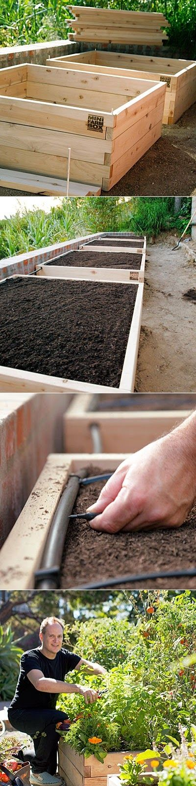 Raised-bed vegetable garden. This would be awesome! Fresh veggies without weeding or watering :) that's my kinda garden! :)