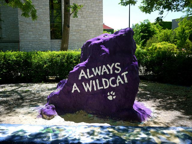 Wildcat Rock @ Northwestern University Go Cats! Another winning football season is ahead of us! (BTW WHY did they have to move the Rock?)